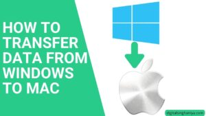 how to transfer data from windows to mac